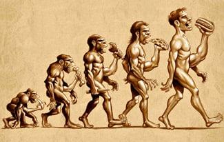 Эволюция и древний человек