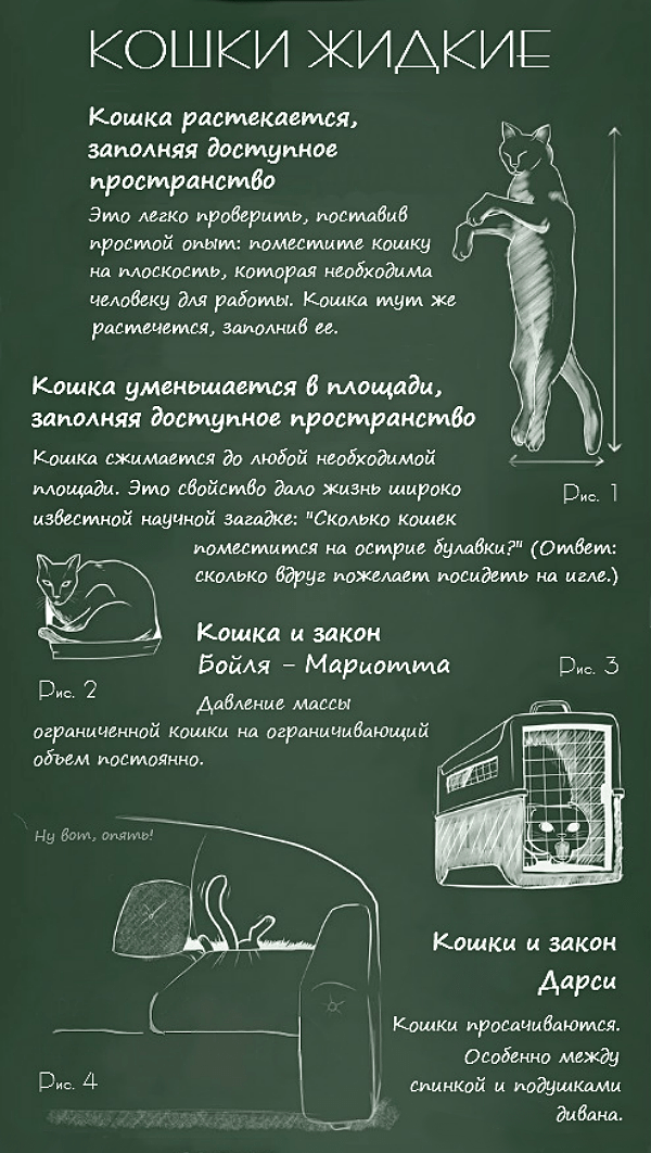 Fizika-koshek-2