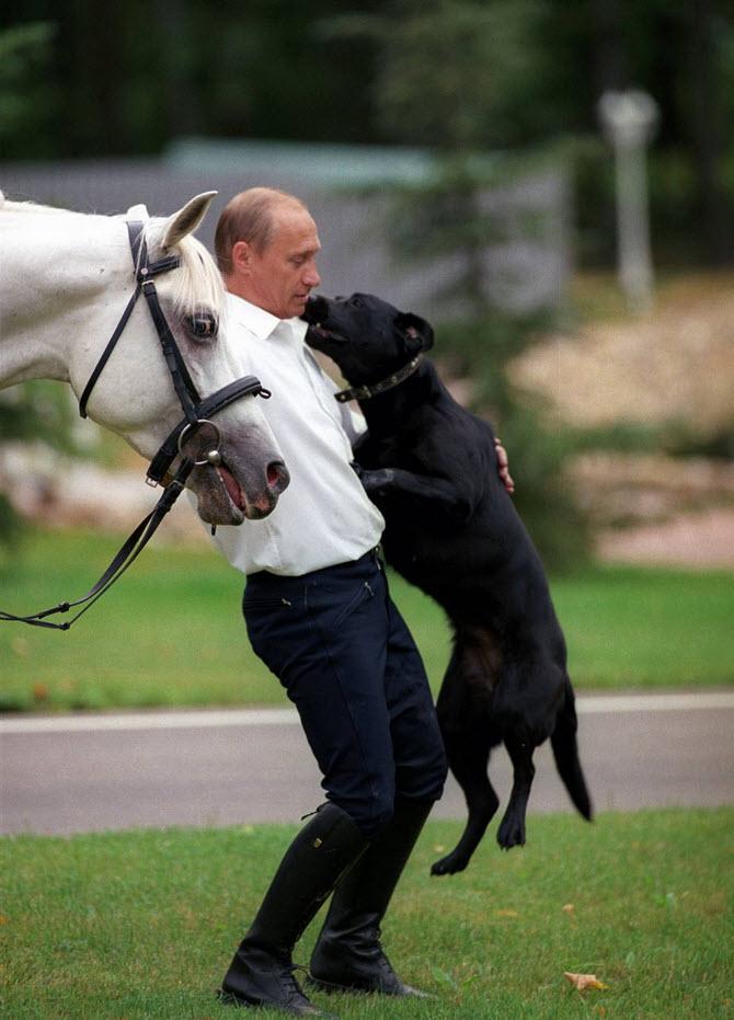 Foto-Putina-s-zhivotnyimi