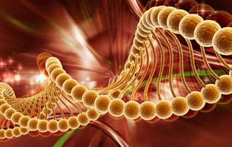Что нужно знать про хромосомы человека