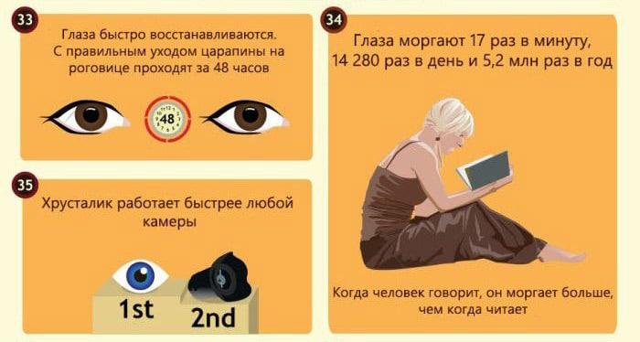 Interesnyie-faktyi-o-glazah-14