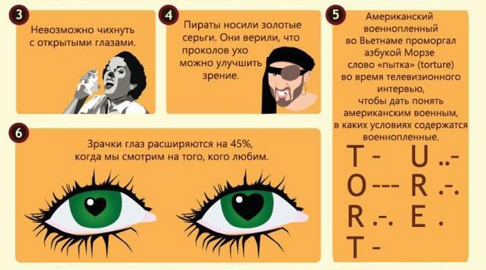 Interesnyie-faktyi-o-glazah-2