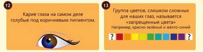 Interesnyie-faktyi-o-glazah-5