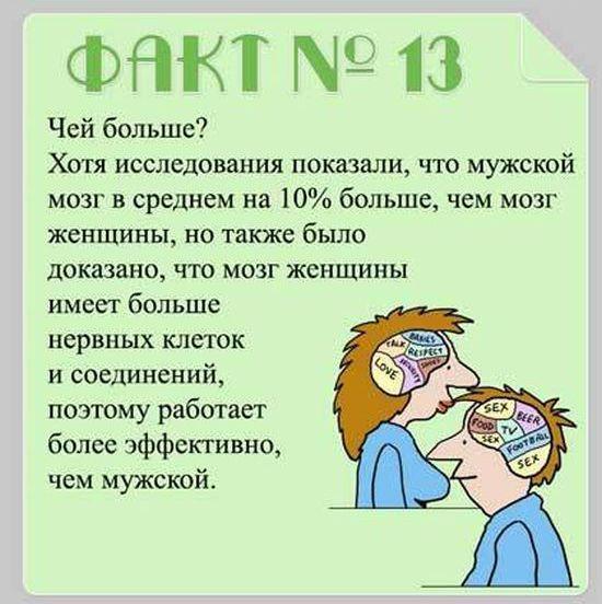 Interesnyie-faktyi-o-mozge-13
