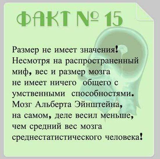 Interesnyie-faktyi-o-mozge-15