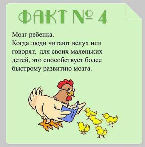 Interesnyie-faktyi-o-mozge-4