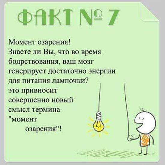 Interesnyie-faktyi-o-mozge-7
