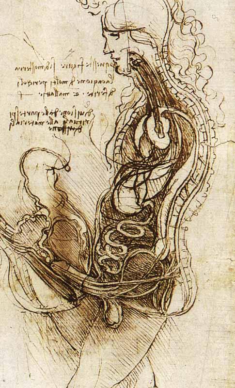 Kartinyi-Leonardo-da-Vinchi-8