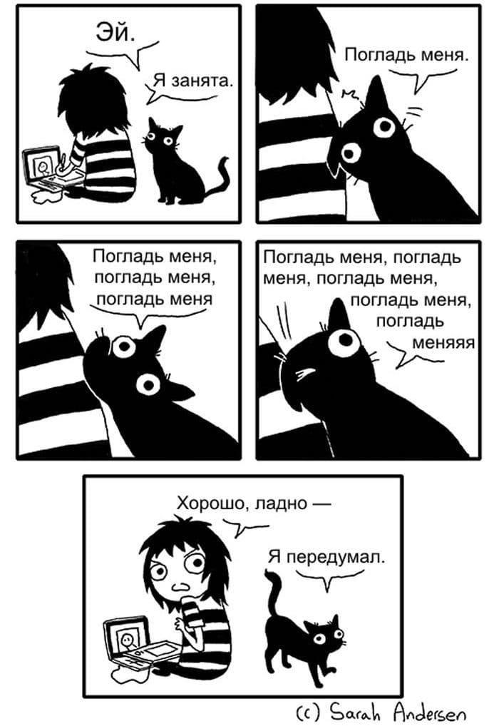 Komiksyi-pro-kotov-16
