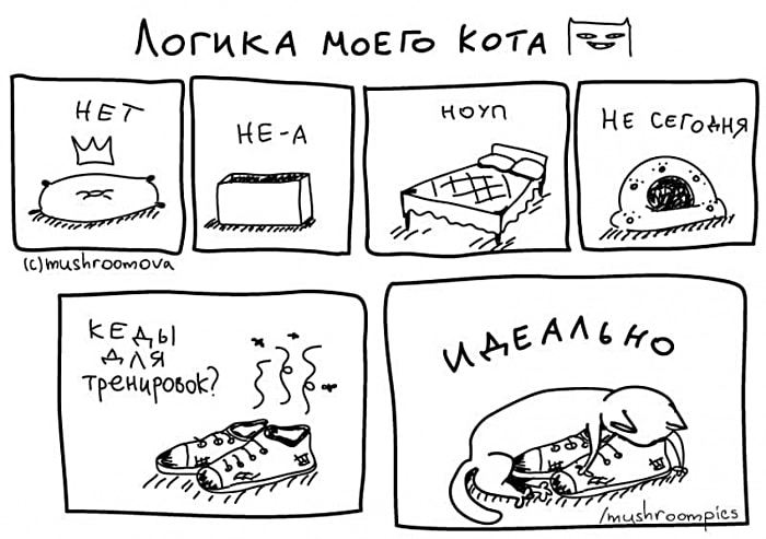 Komiksyi-pro-kotov-2