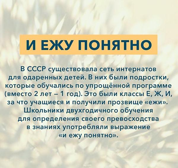 Kryilatyie-vyirazheniya-I-ezhu-ponyatno