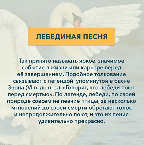Kryilatyie-vyirazheniya-Lebedinaya-pesnya