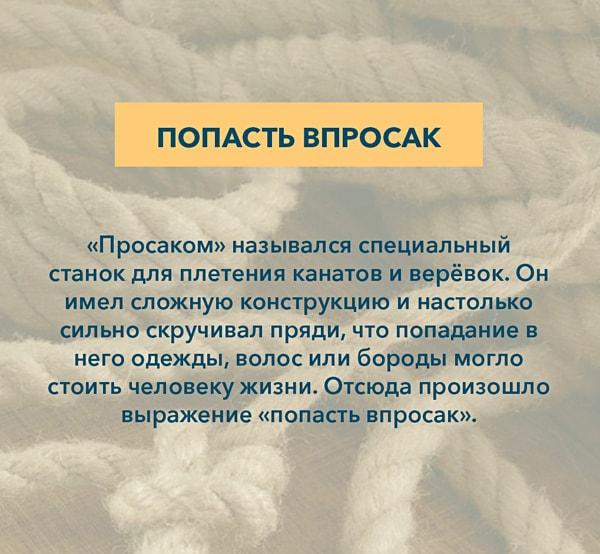 Kryilatyie-vyirazheniya-Popast-vprosak