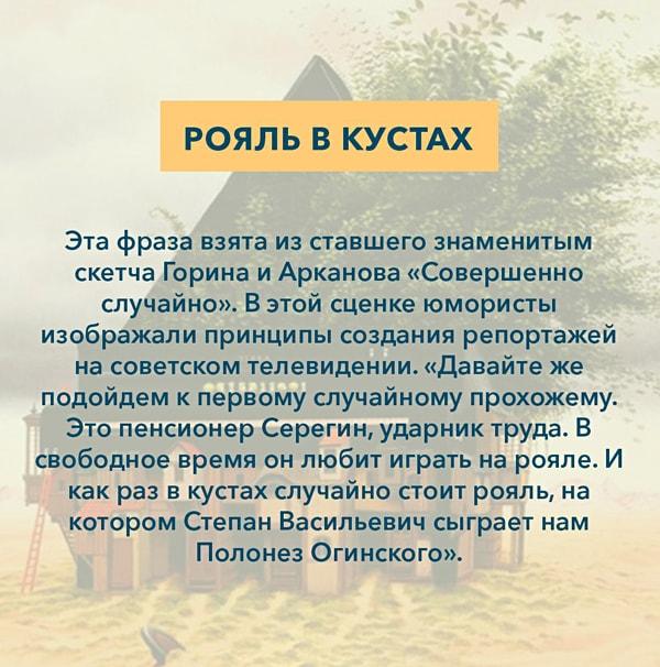 Kryilatyie-vyirazheniya-Royal-v-kustah