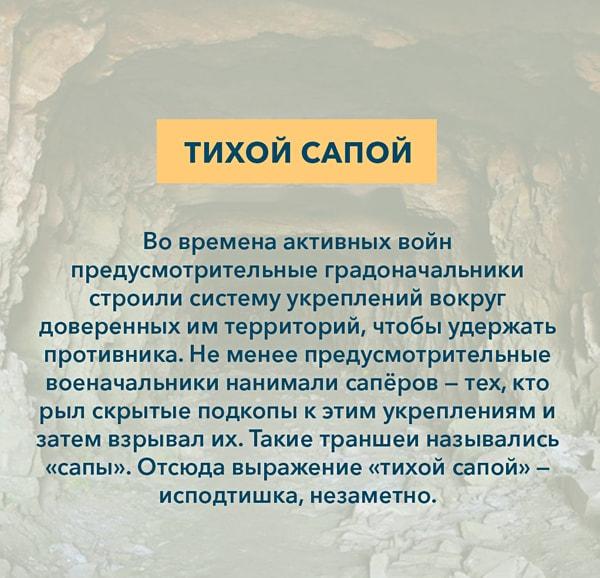 Kryilatyie-vyirazheniya-Tihoy-sapoy