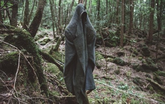 Лес самоубийц