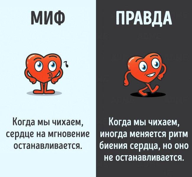 Mifyi-o-chelovecheskom-tele-11