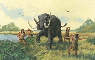 Как происходило одомашнивание животных