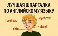 Основы английского в таблицах