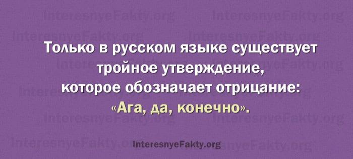 Osobennosti-russkogo-yazyika-12