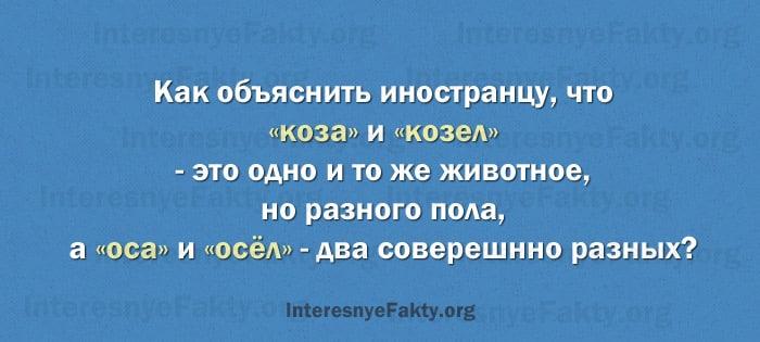 Osobennosti-russkogo-yazyika-18