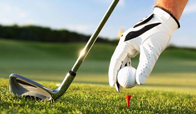 Podbiratel-myachey-dlya-golfa