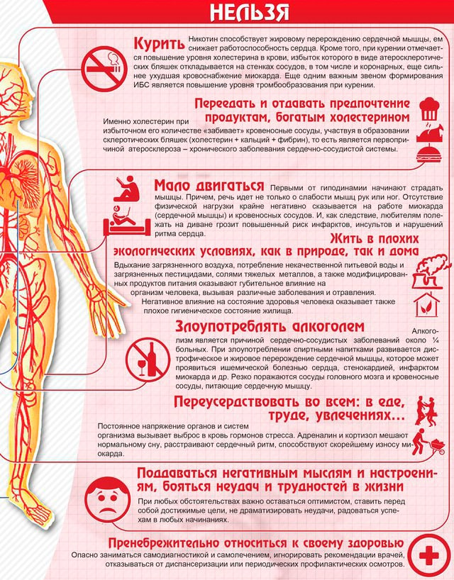 Profilaktika-serdechno-sosudistyih-zabolevaniy-1