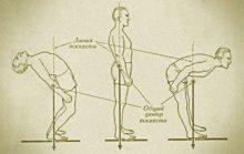 Равновесие тела