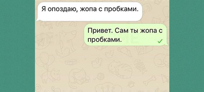 Surovaya-muzhskaya-druzhba-v-11-SMS-8