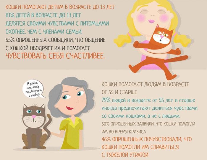 Zabavnyie-faktyi-o-koshkah-5