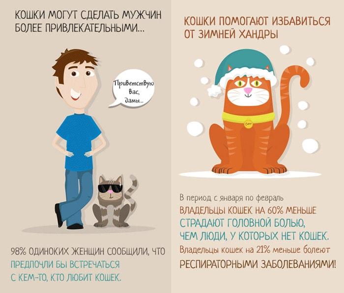 Zabavnyie-faktyi-o-koshkah-6