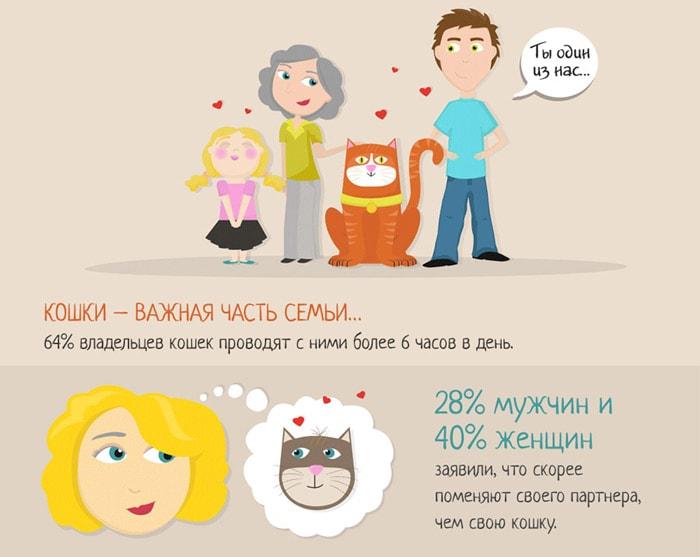 Zabavnyie-faktyi-o-koshkah-7